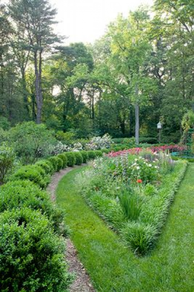 Summer Plant Health Care | Ellicott City MD