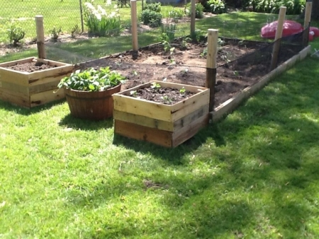 Use Recycled Wooden Pallets to Make Elevated Garden Boxes