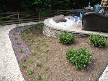 Save Time and Effort with Low-Maintenance Landscaping | Potomac, MD